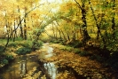 Autumn. Watercourse 50х75
