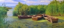 Boats 40x90