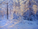 Winter landscape 60х80