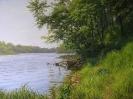 Утро на реке 60x80