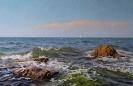 Камни в воде 55x85