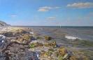The shore. Mezhvodnoe 55x85