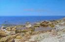 Coast 55x85.jpg