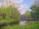 Spring. Flood 60x80