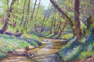 Spring. Stream in the forest 40x60